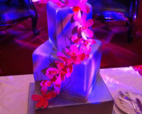 Orchids-Silver-Cake.jpg